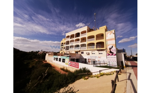 Apartment In Playa Flamenca